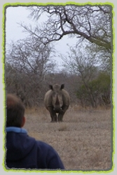 Special Interest Birding Safaris and Tours to the Pilanesberg National Park.